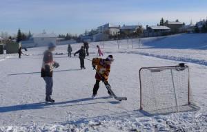 SkatingHarvestJan2012